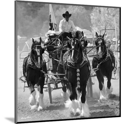 Shire Horses-Barry Hart-Mounted Art Print