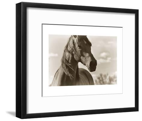Lonesome Dove-Barry Hart-Framed Art Print