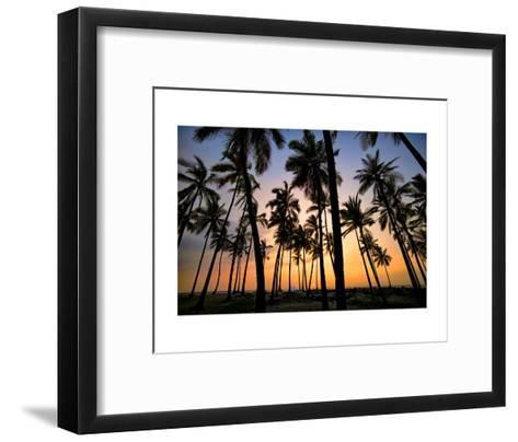 Palm Forest-Dennis Frates-Framed Art Print