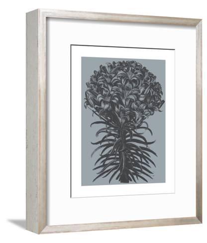 Lilies (Slate & Ink)-Botanical Series-Framed Art Print