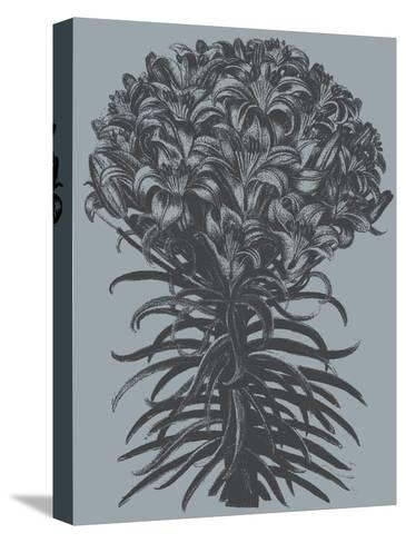 Lilies (Slate & Ink)-Botanical Series-Stretched Canvas Print