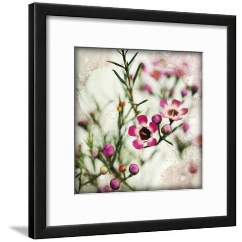 Wax Flower I-James Guilliam-Framed Art Print