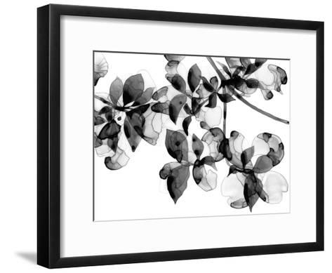 Abloom - Noir-Jackie Battenfield-Framed Art Print