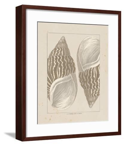 Coquillages II-Maria Mendez-Framed Art Print