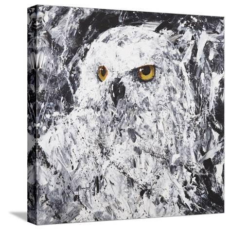 Owl III-Joseph Marshal Foster-Stretched Canvas Print