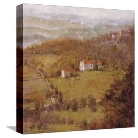 Wine Country II-Longo-Stretched Canvas Print