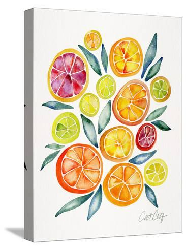 Citrus Slices-Cat Coquillette-Stretched Canvas Print