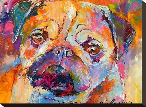 Pug-Richard Wallich-Stretched Canvas Print