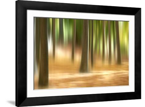 Forest Run III-James McLoughlin-Framed Art Print