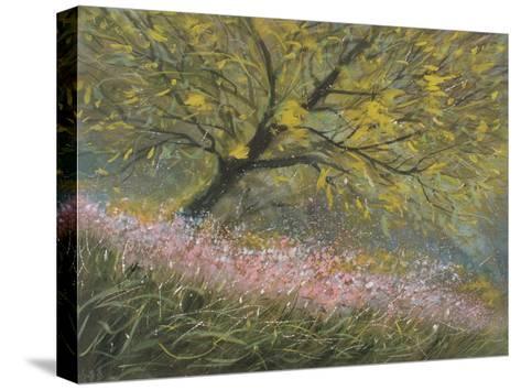 Hectic Spring-Pihua Hsu-Stretched Canvas Print