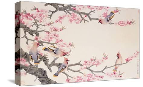 Singing Birds in Spring-Hsi-Tsun Chang-Stretched Canvas Print