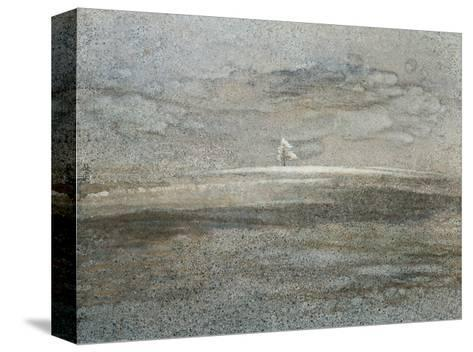 Silent Nature-Yunlan He-Stretched Canvas Print
