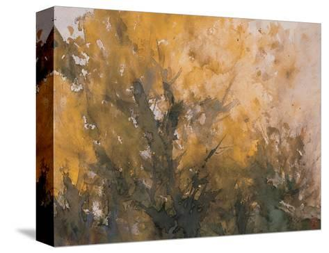 Trees in Autumn-Wanqi Zhang-Stretched Canvas Print