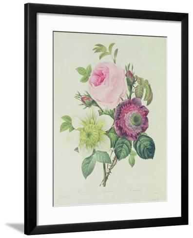 Rose, Anemone and Clematide-Pierre-Joseph Redout?-Framed Art Print
