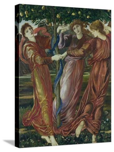 Garden of the Hesperides, 1869-73-Edward Burne-Jones-Stretched Canvas Print