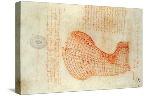 Codex Madrid 1/57-R Study for a Sculpture of a Horse-Leonardo da Vinci-Stretched Canvas Print
