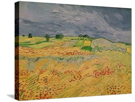 The Plain at Auvers, c.1890-Vincent van Gogh-Stretched Canvas Print