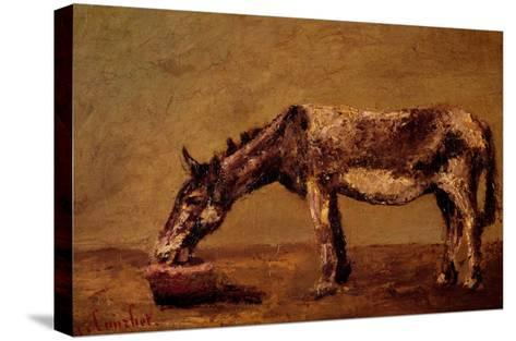 The Donkey-Gustave Courbet-Stretched Canvas Print