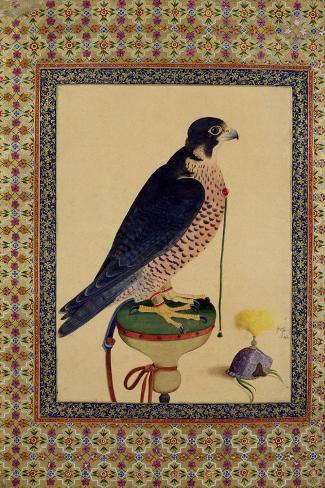 Falcon, from a Moraqqa--Stretched Canvas Print