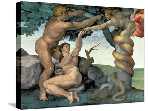 Sistine Chapel Ceiling (1508-12): the Fall of Man, 1510 (Post Restoration)-Michelangelo Buonarroti-Stretched Canvas Print