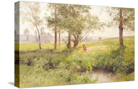 Landscape-Emile Isenbart-Stretched Canvas Print