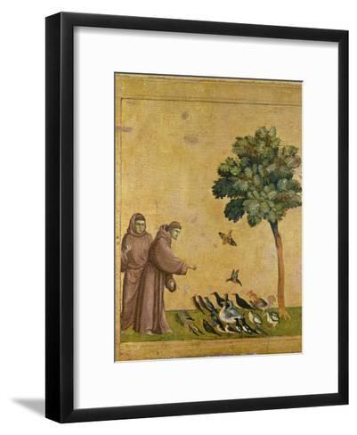 St. Francis of Assisi Preaching to the Birds-Giotto di Bondone-Framed Art Print