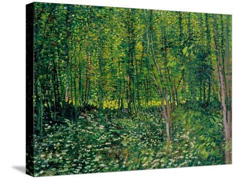 Woods and Undergrowth, c.1887-Vincent van Gogh-Stretched Canvas Print