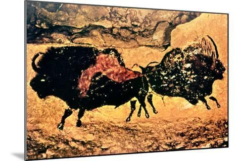Rock Painting of Bison, circa 17000 BC--Mounted Giclee Print