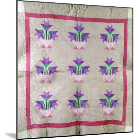 An Amish Pieced and Appliqued Cotton Quilted Coverlet, circa 1930--Mounted Giclee Print