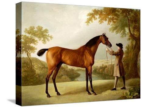 Tristram Shandy, a Bay Racehorse Held by a Groom in an Extensive Landscape, circa 1760-George Stubbs-Stretched Canvas Print