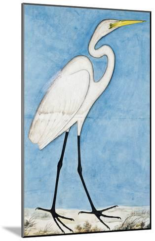 A Great Egret, Lucknow School, circa 1790--Mounted Giclee Print