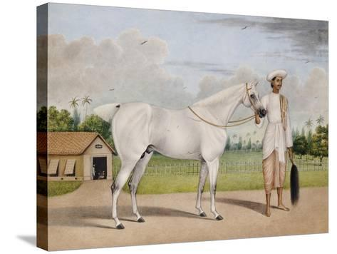 A Small White Stallion Standing with a Groom Holding a Chauri-Shaikh Muhammad Amir Of Karraya-Stretched Canvas Print