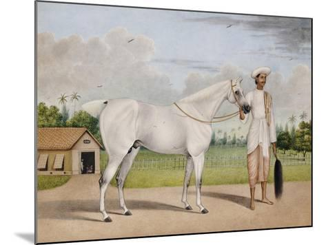 A Small White Stallion Standing with a Groom Holding a Chauri-Shaikh Muhammad Amir Of Karraya-Mounted Giclee Print