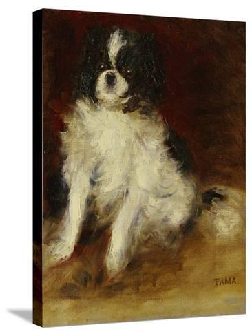 Tama-Pierre-Auguste Renoir-Stretched Canvas Print