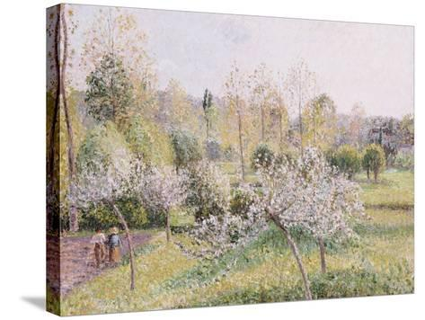 Apple Trees in Blossom, Eragny, 1895-Camille Pissarro-Stretched Canvas Print