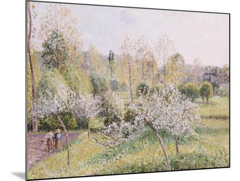 Apple Trees in Blossom, Eragny, 1895-Camille Pissarro-Mounted Giclee Print