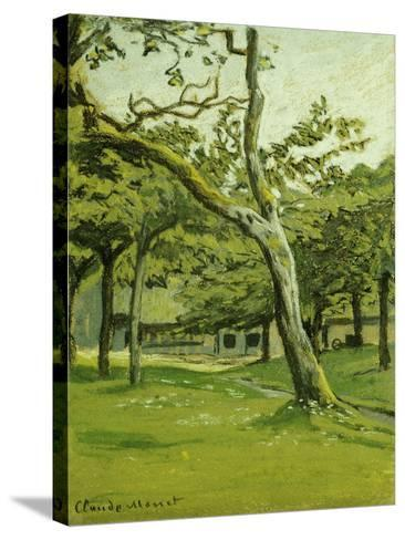 An Orchard-Claude Monet-Stretched Canvas Print