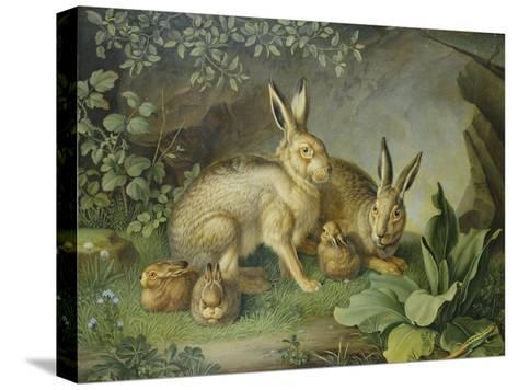 Hares and Leverets in a Rocky Lair-Johann Wenzel Peter-Stretched Canvas Print