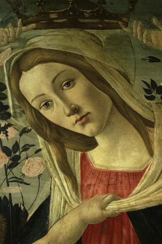 The Virgin and Child Surrounded by Angels-Sandro Botticelli-Stretched Canvas Print