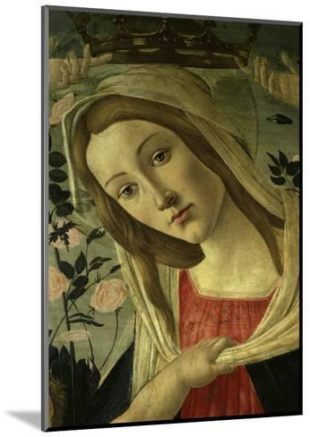 The Virgin and Child Surrounded by Angels-Sandro Botticelli-Mounted Giclee Print