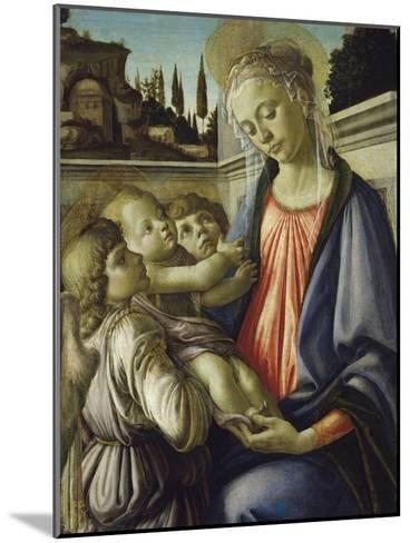 Madonna and Child-Sandro Botticelli-Mounted Giclee Print