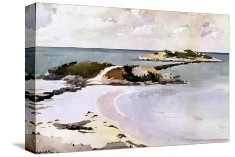 Gallows Island-Winslow Homer-Stretched Canvas Print