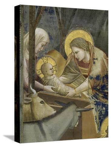 The, Detail Nativity-Giotto di Bondone-Stretched Canvas Print