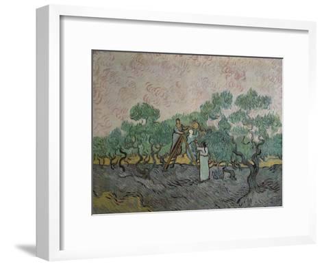 The Olive Pickers, Saint-Remy, c.1889-Vincent van Gogh-Framed Art Print