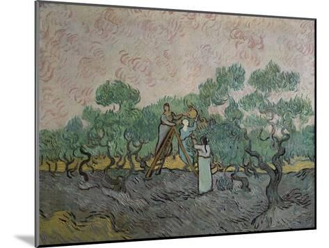 The Olive Pickers, Saint-Remy, c.1889-Vincent van Gogh-Mounted Giclee Print