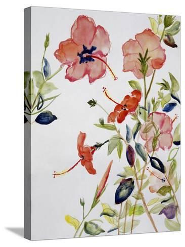 Hibiscus Flowerpiece-Sir Roy Calne-Stretched Canvas Print