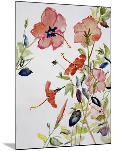Hibiscus Flowerpiece-Sir Roy Calne-Mounted Giclee Print