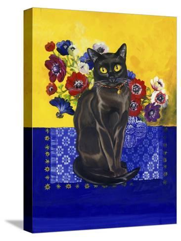 Burmese Cat, Series II-Isy Ochoa-Stretched Canvas Print