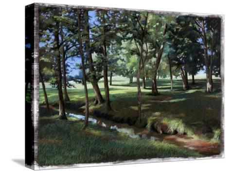 Shady Spot at the Botanical Gardens-Helen J^ Vaughn-Stretched Canvas Print