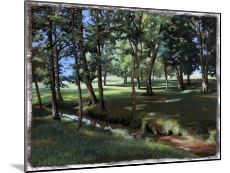 Shady Spot at the Botanical Gardens-Helen J^ Vaughn-Mounted Giclee Print